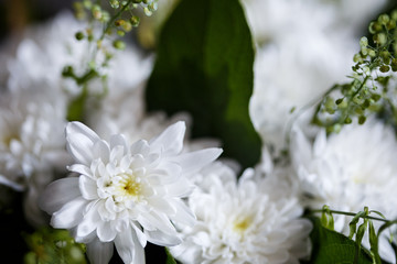 Close-up photo of bouquet of golden-daisy in a basket. Spring mood, macro lens