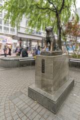 Statue of Hachiko at Shibuya Station, Tokyo, Japan