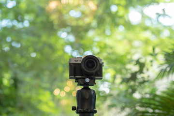 Vintage style digital camera on tripod with green nature background.