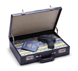 Briefcase with Cash Gun and Passport