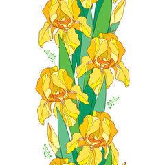 Vector seamless pattern with outline yellow Iris flower, bud and green leaf on the white background. Floral background with ornate Iris in contour style for spring or summer design.