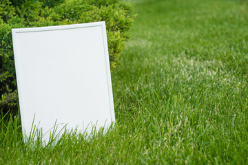 White frame on a background of green grass