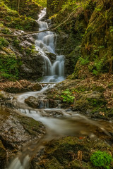 Stream flowing through the forest near the  north Italian village Nocerno