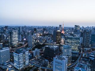 夕方の東京タワーとビル群