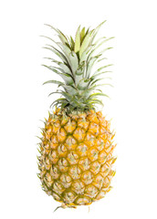 pineapple is tropical fruit isolated on white background