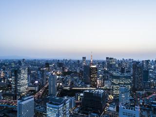 東京タワーのある夕景
