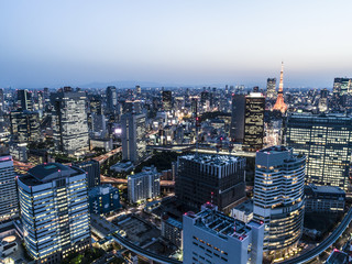東京夜景の航空写真
