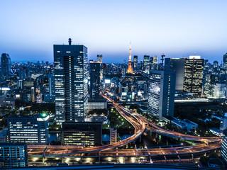 光輝く動脈、東京の夜景