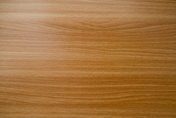 wood background texture, abstract, natural background
