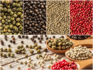 Four variations of peppercorns. Collection of spices