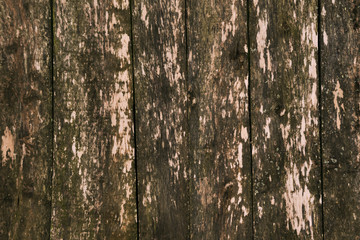 Background of wooden boards. Selective focus