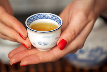 Cropped shot of woman holding traditional chinense teacup with oolong green tea.