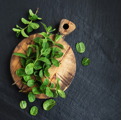 Green mint on a old wooden board