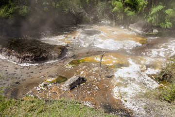 volcanic activities at waimangu