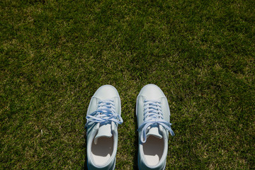 Lawn and white shoes 芝生と白い靴