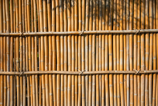 Japanese bamboo fence texture background with sunlight