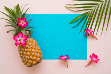 Flat lay of pineapple, flowers, palm leaf on pink and blue background with copy space, tropical summer holiday vacation, wedding invitation party concept