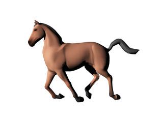 Pferd im Gallop