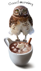 Owl and Cup of coffee watercolor painting