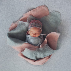 newborn baby in the image of a flower installation
