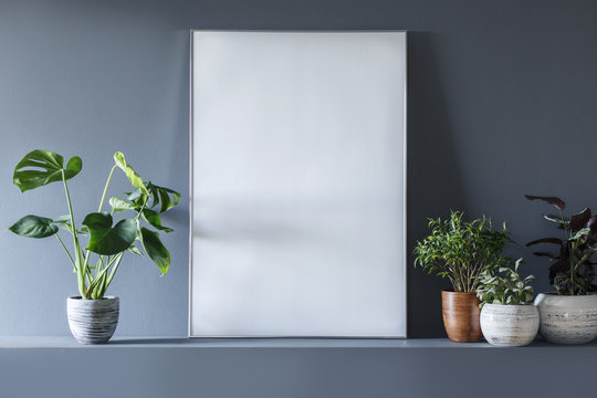 Close-up of mockup on empty white poster in grey room interior with plants