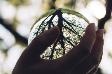 Woman's hand holding a glass sphere