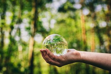 Woman's hand holding a glass sphere in the woods.
