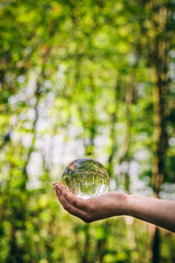 A glass sphere held by a woman, reflecting a forest.