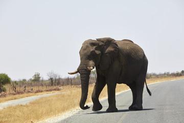 Botswana Namibia Simbabwe