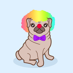 Kawaii illustration of a cute little chubby pug dog in a clown costume with red nose, purple bow and rainbow wig. Let's go to the circus!