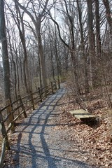The gravel nature trail in the park forest on a sunny day.
