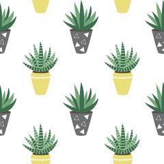 green house plants in the yellow and gray pots sansevieria haworthia aloe scandinavian style boho seamless pattern vector