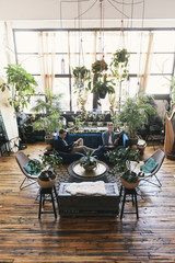 High angle view of gay men sitting on sofa amidst potted plants at home