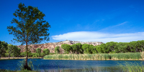 Lagoon, marsh, trees, and cliff at Dead Horse Ranch State Park in Cottonwood, Arizona; supplied with water from the Verde River