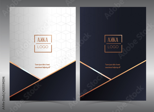 Luxury Premium Menu Design Product Cover Package Bag Financial