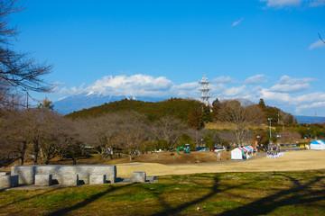 富士山 岩本山公園 梅