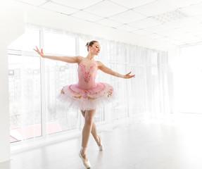 Elegant female ballet dancer in pink tutu practicing and smiling