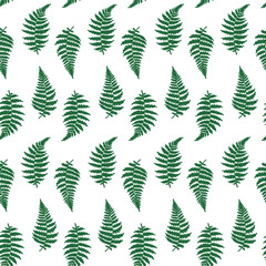Vector pattern illustration of fern leaf