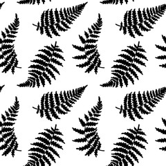 Vector pattern illustration of fern leaf