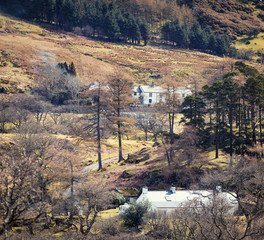 Ogwen Valley at Early Spring Detail