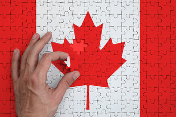 Canada flag  is depicted on a puzzle, which the man's hand completes to fold
