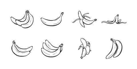 Set of banana hand drawn illustration vector sketch collection line art icon