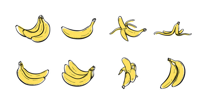 Set of banana hand drawn icon illustration vector Sketch colored collections