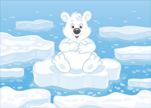 Polar bear sitting on a drifting ice floe in an arctic sea, vector illustration in a cartoon style