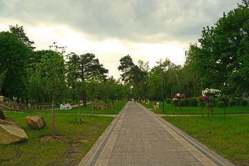 Long new road with paving stones in the Park green and beautiful.