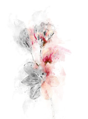 painted watercolor fresh flowers
