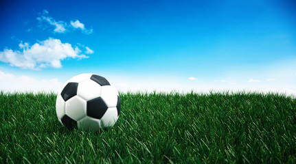 Traditional black and white soccer ball on grass