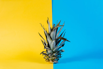 Fashion Pineapple. Summer Color. Tropical Fruit on retro style and toned colors. Minimalist style. Creative Art concept. Pineapple on pink, yellow and blue pastel colors.