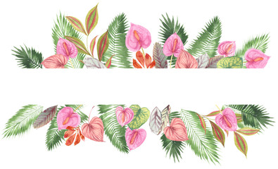 tropical watercolor background, natural leaves, paportnik, dense jungle, palm leaves, liana, traditional chant, callas, lianas, on white background