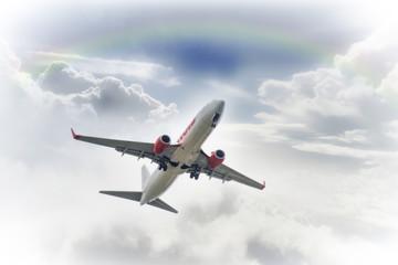 Passenger plane in background